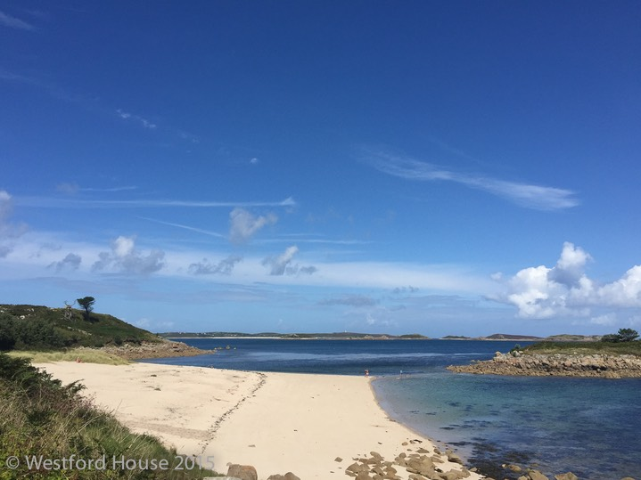 Westford Scilly Pelistry -6
