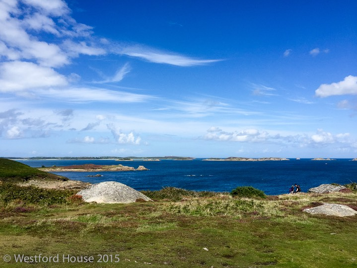 Westford Scilly Pelistry -7