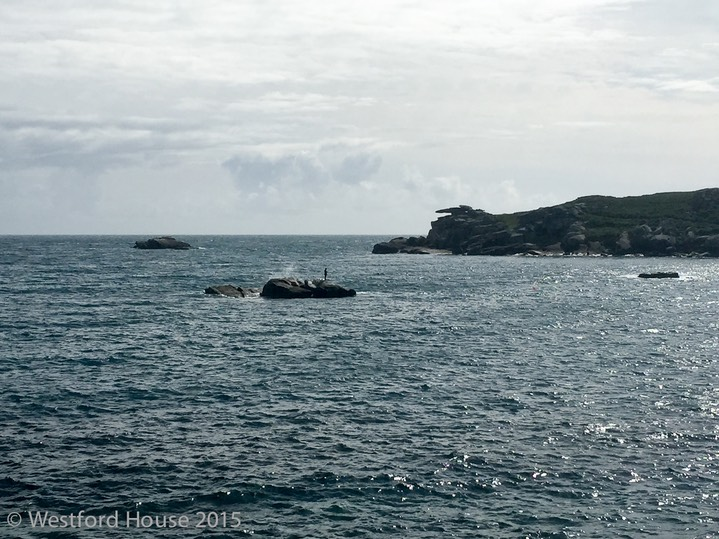 Westford Scilly Pelistry -13